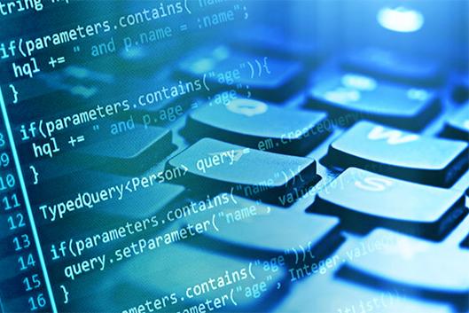 La tutela del software