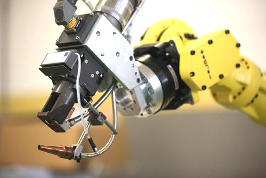 La Dichiarazione d'Incorporazione per le quasi macchine